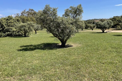 cottage_country_north_east_sardinia_6